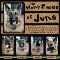 The_Many_faces_of_Juno.jpg