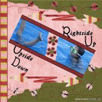 UpsideDownRightsideUp_1.jpg