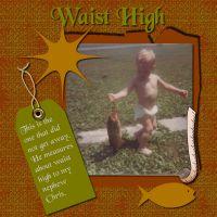 Waist-High-000-Page-1.jpg