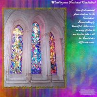 Washington-DC-Trip-000-Stained-Glass.jpg