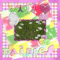 Wild_Daisies.jpg