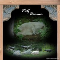 Wolf-Dreams_edited-1.jpg