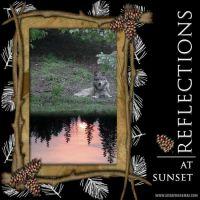 Wolf_Reflections.jpg