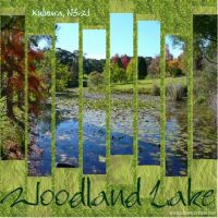 Woodland_Lake_2_.jpg