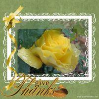 becca-flower.jpg