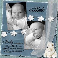 blake2-000-Page-1_Medium_.jpg