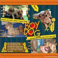 boy-dog1.jpg