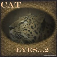 cateyes2-000-Page-1.jpg
