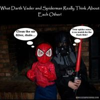 darthvaderspiderman.jpg