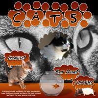 iiRe_CatNip-000-Page-1.jpg