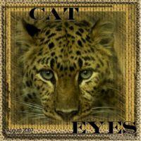 leopard-000-Page-1.jpg