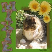 mixie-000-Page-1.jpg
