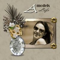 my_template_1_-_Moonbeams_Beautiful_embellishments_kit.jpg