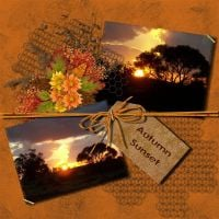 ntd-autumn-000-Page-1_Medium_.jpg