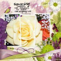 pjk-springpassion-000-Page-1.jpg