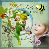 r106285_The_Little_Frog.jpg