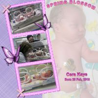 sac_Cera-Kaye-000-Page-1.jpg