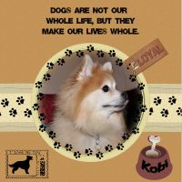 sac_Furry-Friends-000-Page-1.jpg