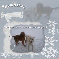 snowflake_-_Page_1.jpg