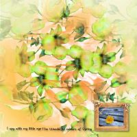spring_colours.jpg