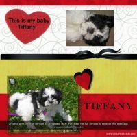 tiffany-000-Page-11.jpg