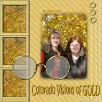 visions-of-gold-jan2010-000-Page-1.jpg
