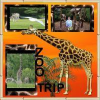zoo-000-Giraffe.jpg