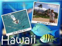 ss_Hawaii02.jpg