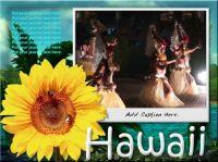 ss_Hawaii04.jpg