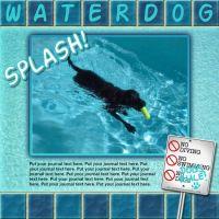 ss_Waterdogs1.jpg
