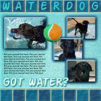 ss_Waterdogs3.jpg