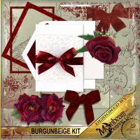 DGO_Burgunbeige_KIT-000-Page-1.jpg