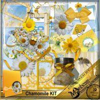 DGO_Chamomile_KIT-000-Page-1.jpg