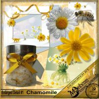 DGO_Chamomile_KIT-001-Page-2.jpg