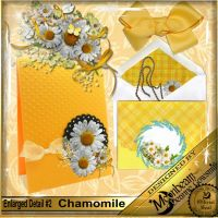 DGO_Chamomile_KIT-002-Page-3.jpg