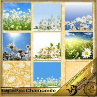 DGO_Chamomile_KIT-003-Page-4.jpg