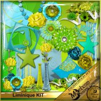 DGO_Liminique_KIT-000-Page-1.jpg
