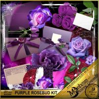 DGO_Purple_Rosebud_KIT-000-Page-1.jpg