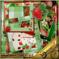 DGO_Strawberry_Salad_KIT-003-Page-4.jpg
