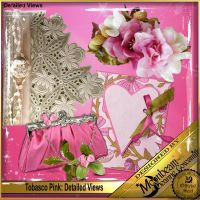 DGO_Tobasco_Pink_KIT-002-Page-3.jpg