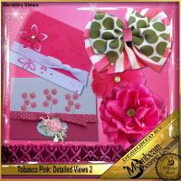 DGO_Tobasco_Pink_KIT-003-Page-4.jpg