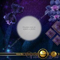 DGO_Viola_Blu-001-Page-2.jpg