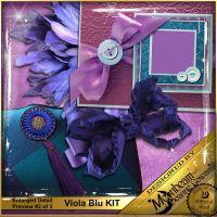 DGO_Viola_Blu_KIT-002-Page-3.jpg