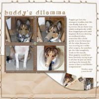 2009-October-_4-003-Buddy_s-Dilemma.jpg
