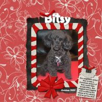 January-2008-005-Bitsy.jpg