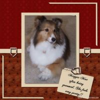 Moonbeam-Layouts-001-MaggieMae.jpg