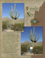 Saguaro-National-Monument-001-Page-2.jpg