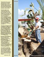 September-2007-_4-006-Ron-v-Tree-p_-2.jpg