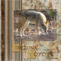 Arizona-000-Page-1.jpg
