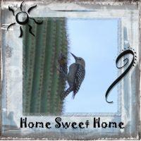 Arizona-004-Page-5.jpg